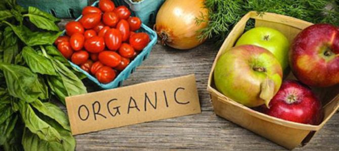 Breaking News! New JAMA Study Finds Eating Organic Foods Linked to Reduced Risk of Cancer!